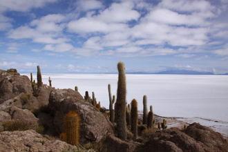 Bolivia022.jpg