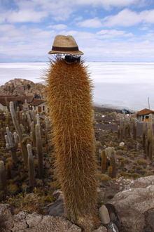 Bolivia024.jpg