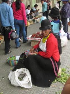 Ecuador012.jpg