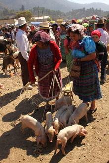 Guate012.jpg